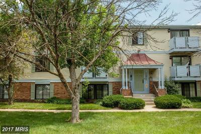 Alexandria Single Family Home For Sale: 8381 Brockham Drive #G