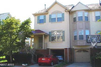 Centreville Rental For Rent: 14085 Winding Ridge Lane