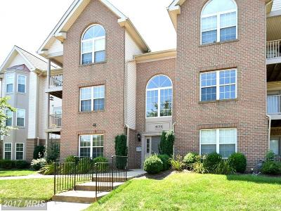 Fairfax Condo For Sale: 4108 Monument Court #101
