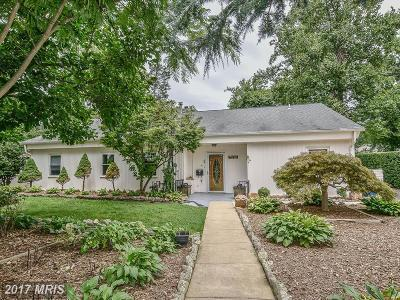 Annandale Single Family Home For Sale: 7218 Pine Drive