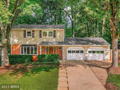 Annandale Single Family Home For Sale: 4825 Springbrook Drive