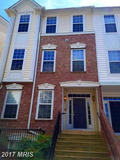 Fairfax Rental For Rent: 11634 Cavalier Landing Court #1408-B