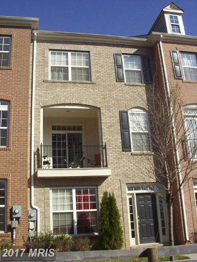Fairfax Rental For Rent: 12037 Overbridge Lane