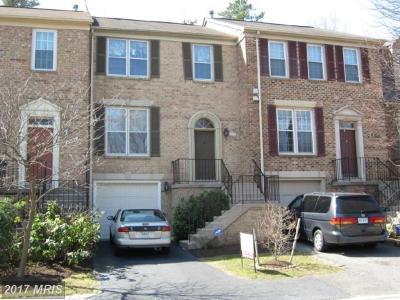Fairfax Rental For Rent: 4277 Fox Lake Drive