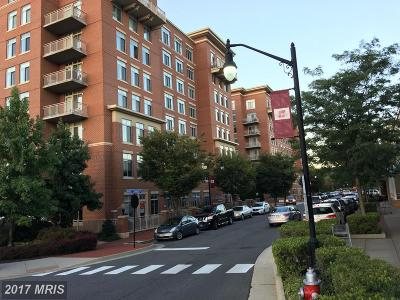 Fairfax Rental For Rent: 4490 Market Commons Drive #411