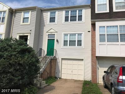Fairfax Rental For Rent: 3328 Buckeye Lane