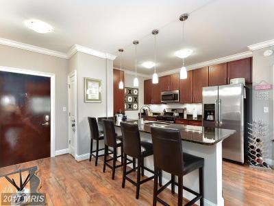 Fairfax Condo For Sale: 6301 Edsall Road #214