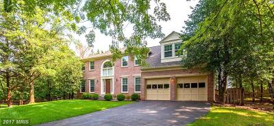 Herndon Single Family Home For Sale: 1219 Rowland Drive