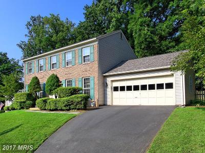 Fairfax Single Family Home For Sale: 10694 Paynes Church Drive