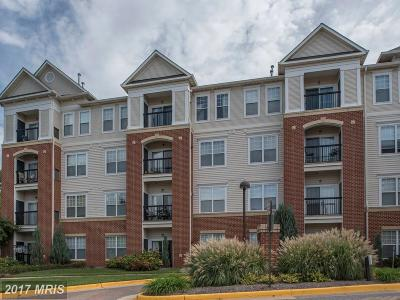 Fairfax Rental For Rent: 3851 Aristotle Court #1-210