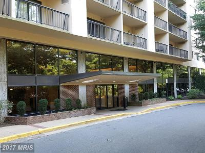 Falls Church Rental For Rent: 3800 Powell Lane #816
