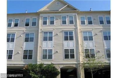 Fairfax Rental For Rent: 3851 Aristotle Court #1-214