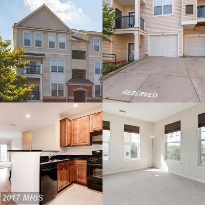 Fairfax Condo For Sale: 11373 Aristotle Drive #9-409