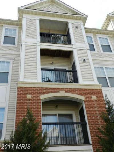 Fairfax Rental For Rent: 11352 Aristotle Drive #7-305
