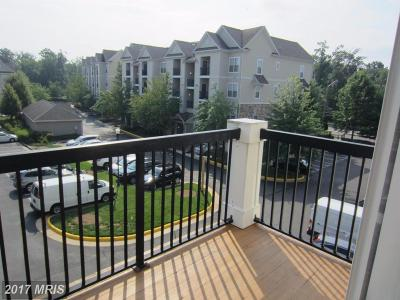 Centreville Condo For Sale: 5124 Brittney Elyse Circle