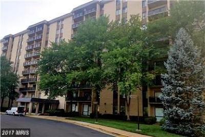 Falls Church Rental For Rent: 3100 Manchester Street #505