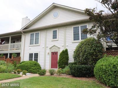 Alexandria Rental For Rent: 6072 Essex House Square