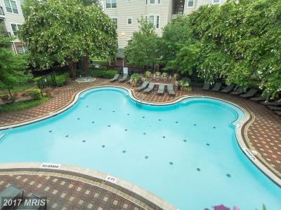 Mclean Condo For Sale: 1570 Spring Gate Drive #7116