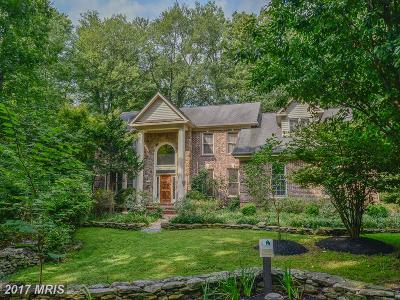 Reston Single Family Home For Sale: 11415 Great Meadow Drive