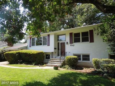Mclean, Mc Lean Single Family Home For Sale: 7017 Hector Road
