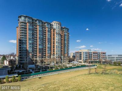 McLean Condo For Sale: 8220 Crestwood Heights Drive #1705