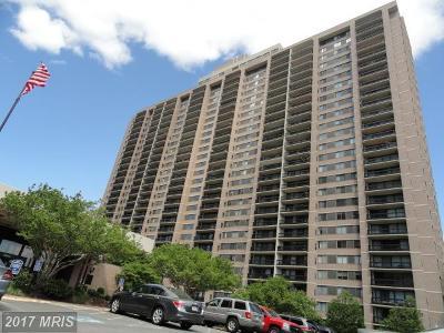 Falls Church Rental For Rent: 5505 Seminary Road #1208N