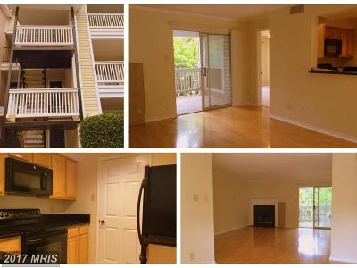 Mclean Rental For Rent: 1543 Lincoln Way #204
