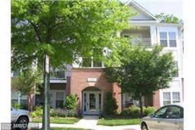 Reston Condo For Sale: 1509 Point Drive #203