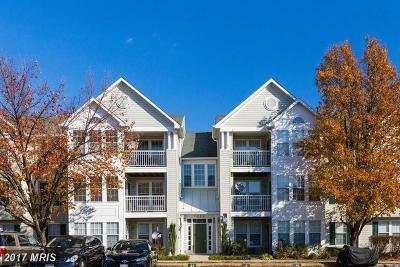 Alexandria Rental For Rent: 7522 Snowpea Court #15