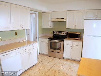 Falls Church Rental For Rent: 5501 Seminary Road #808S