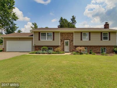 Fairfax Single Family Home For Sale: 3835 Maple Hill Road