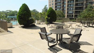 Falls Church Condo For Sale: 5501 Seminary Road #1905S