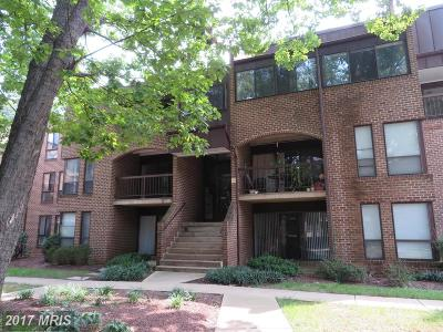 Reston Condo For Sale: 11236 Chestnut Grove Square #261