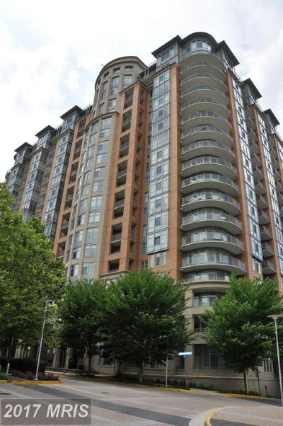 Mclean Rental For Rent: 8220 Crestwood Heights Drive #203