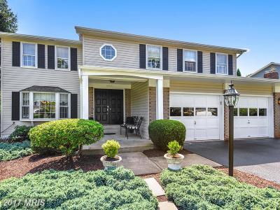 Fairfax Single Family Home For Sale: 13371 Meadowsweet Drive