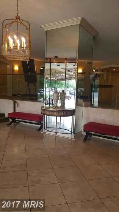 Mclean Rental For Rent: 8370 Greensboro Drive #622