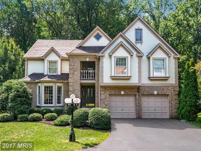 Burke Single Family Home For Sale: 9429 Wooded Glen Avenue