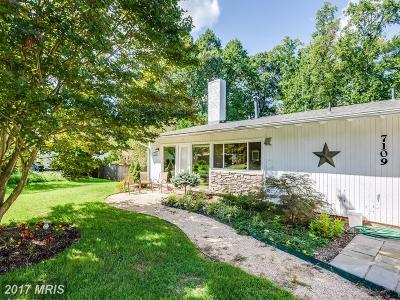 Falls Church Single Family Home For Sale: 7109 Carol Lane