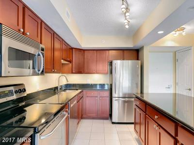 Falls Church Condo For Sale: 2230 George C Marshall Drive #1018