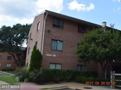 Falls Church Condo For Sale: 7604 Savannah Street #T2
