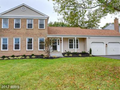 Chantilly Single Family Home For Sale: 15201 Bannon Hill Court