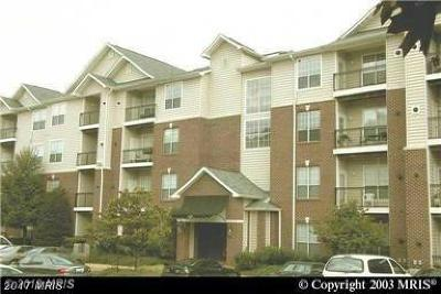 McLean Condo For Sale: 1601 Spring Gate Drive #1402