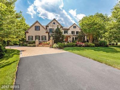 McLean Single Family Home For Sale: 8340 Springhaven Garden Lane