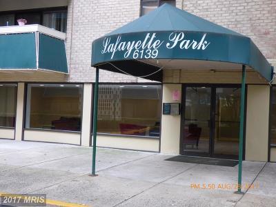 Falls Church Condo For Sale: 6139 Leesburg Pike #205