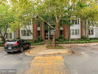Falls Church Condo For Sale: 7600 Lakeside Village Drive #J