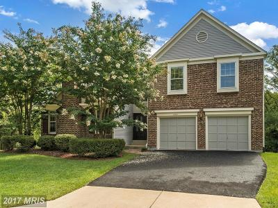 Springfield Single Family Home For Sale: 8641 Ivy Mint Court