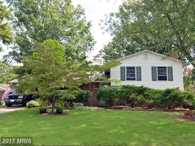 Centreville Single Family Home For Sale: 14823 Cranoke Street