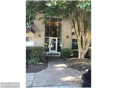 Annandale Condo For Sale: 4319 Americana Drive #102