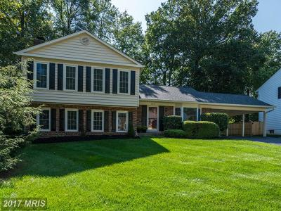 Fairfax Single Family Home For Sale: 10717 Rippon Lodge Drive