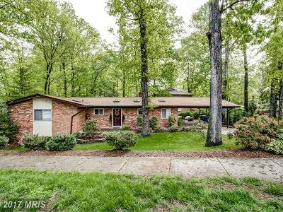 Reston Single Family Home For Sale: 11241 South Shore Road